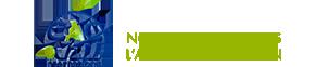 CAC International – Audit – Advisory – Tax & Legal – IT Consulting – Conseil en Afrique