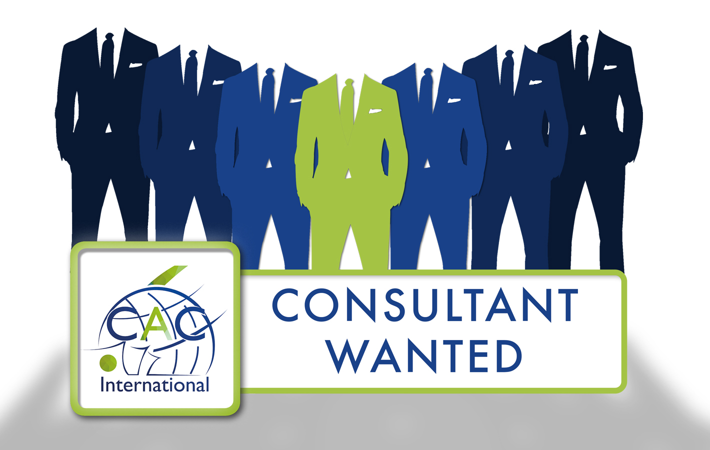 Tax And Legal Consultant Needed